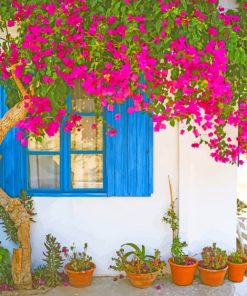 Bougainvillea Flower paint by numbers