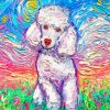 Colorful Poodle Dog Paint by numbers