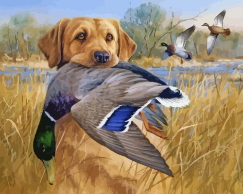 Labrador And Mallards paint by numbers