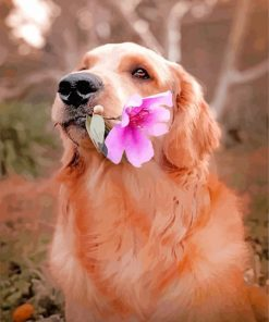 Labrador Retriever And Flower paint by numbers