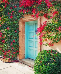 Aesthetic Cyan Door And Bougainvillea paint by numbers