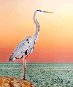 blue heron paint by numbers