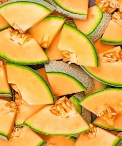cantaloupe slices paint by numbers
