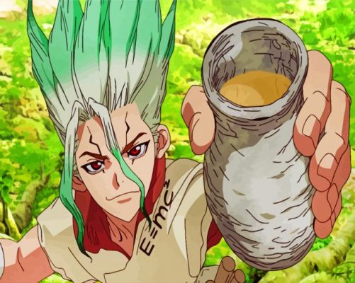 dr stone paint by number