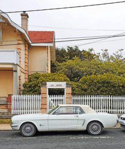 Vintage Chevrolet Camaro paint by numbers