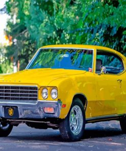 yellow buick skylark paint by numbers